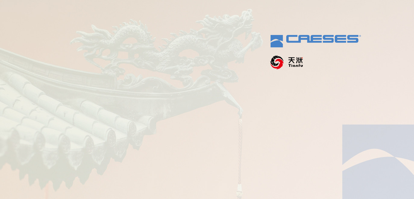 caeses chinese users meeting 2019